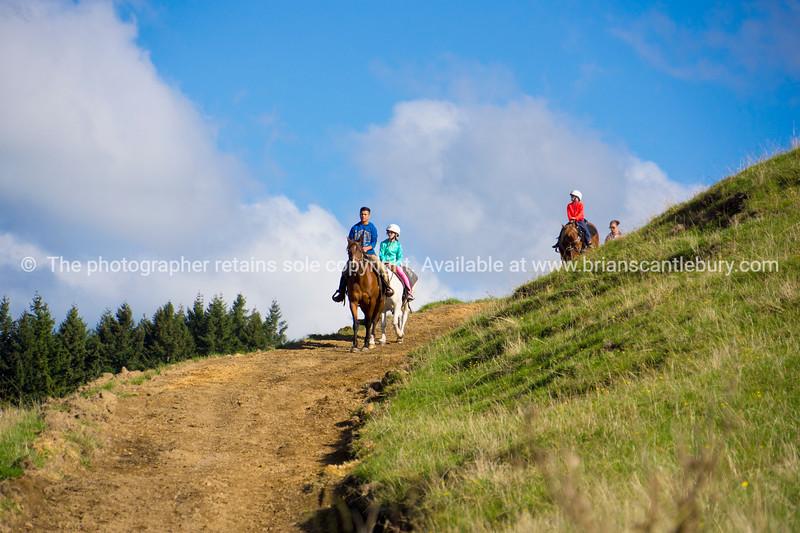 Tourist horse riding activity