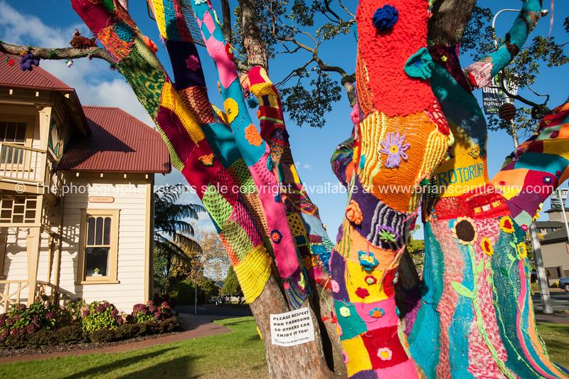 Yarn bomb, tree in Rotorua.
