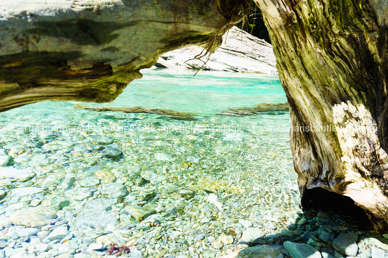 Turquoise river viewed through fallen tree trunk.