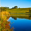 "Tauranga scenics.<br /> <br /> Mc Larens Falls Lake, Tauranga. On a clear day. Tauranga is New Zealands 5th largest city and offers a wonderfull variety of scenic and cultural experiences. Tauranga stock images Tauranga scenics. See;  <a href=""http://www.blurb.com/b/3811392-tauranga"">http://www.blurb.com/b/3811392-tauranga</a> mount maunganui landscape photography, Tauranga Photos; Tauranga photos, Photos of Tauranga Also see; <a href=""http://www.brianscantlebury.com/Events"">http://www.brianscantlebury.com/Events</a>"