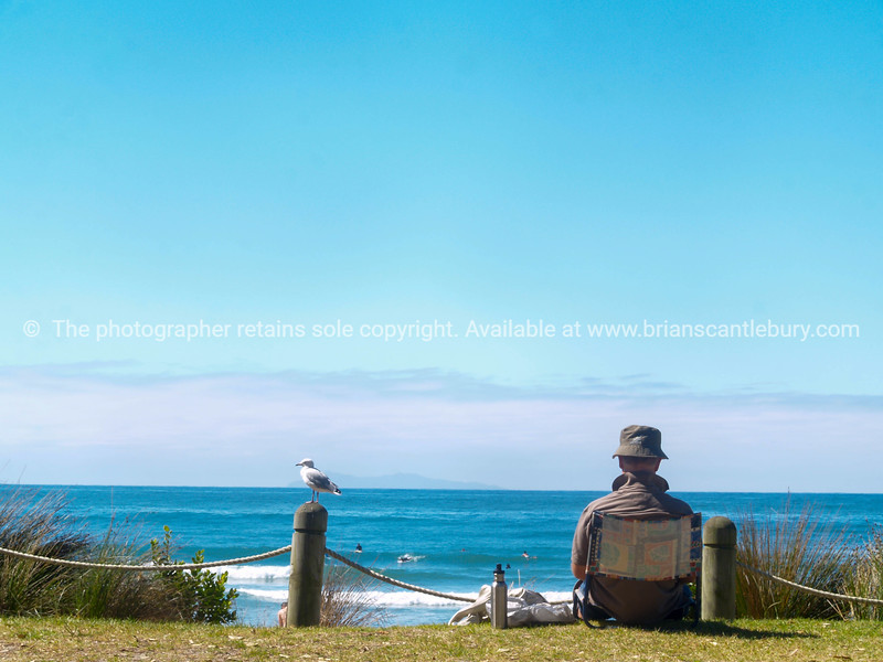 Man sitting in folding beach chair with seagull on post and ocean view Mount Maunganui