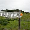 Old sign. Tora Walk. New Zealand Image.
