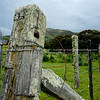 Rustic fence post. Tora. New Zealand Image.