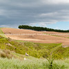 Wairarapa back country farmland. New Zealand images.