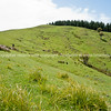 Scenic New Zealand, the Wairarapa back-country, Tora. New Zealand Image