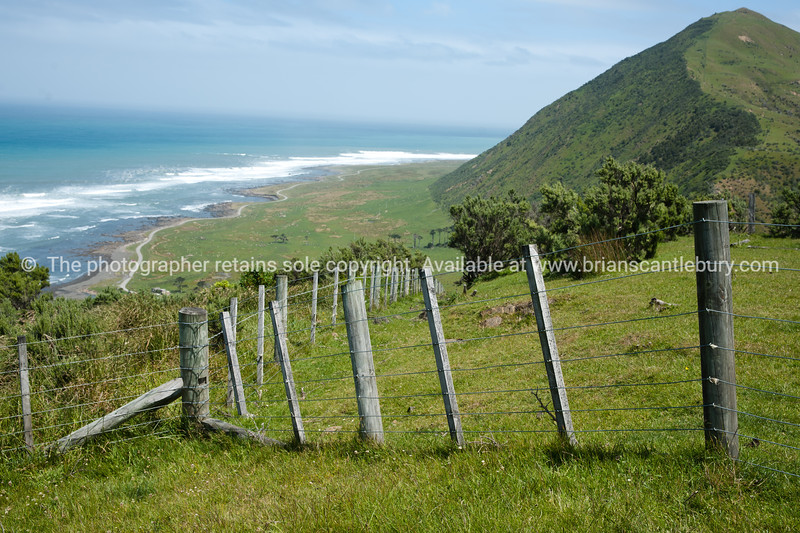 Scenic New Zealand, the Wairarapa coastal farmland. Tora. New Zealand Image