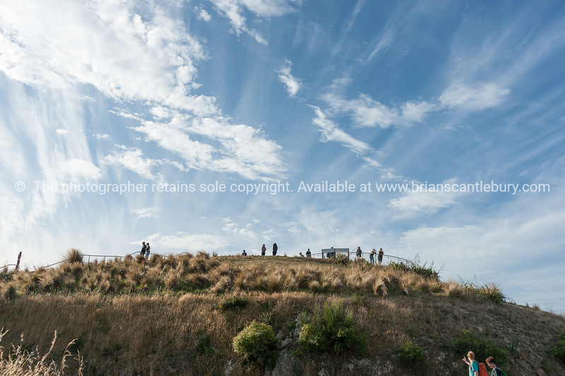 Tourists on and arriving at peak of Mount Victoria Wellington New Zealand
