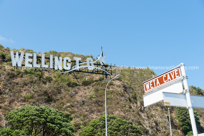 Windy Wellington sign on hillside at Miramar