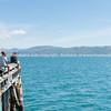 Point Howard Wharf fishing Wellington