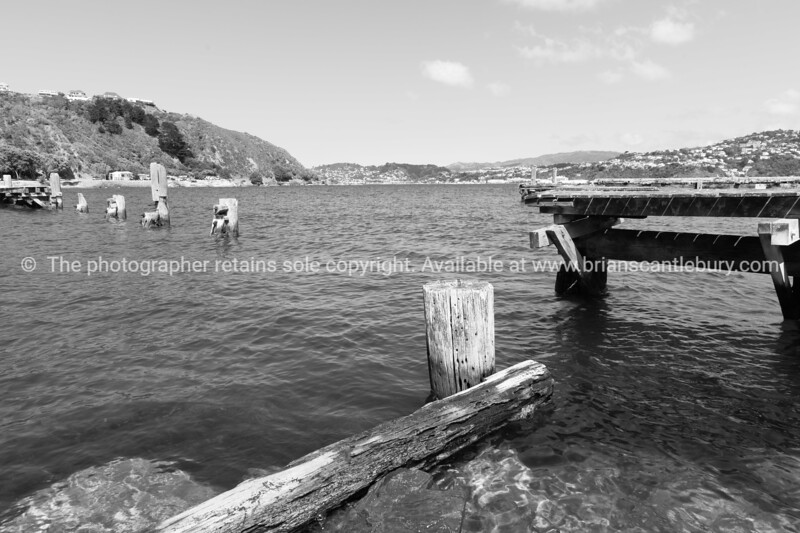 Old pier Shelly Bay Road Wellington