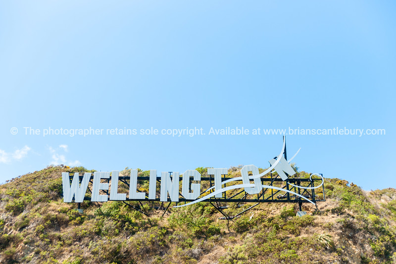 Windy Wellington sign on hillside at Miramar