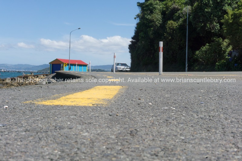 Coastal road around Wellington harbour Lowry Bay with bright colourred boat shed.