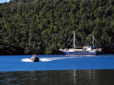 2013 Fiordland Discovery Cruise