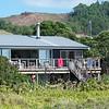 Bills old house at Opito Bay