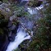 Wairere Stream below the Taranaki Falls