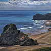 Lion Rock-Piha Beach