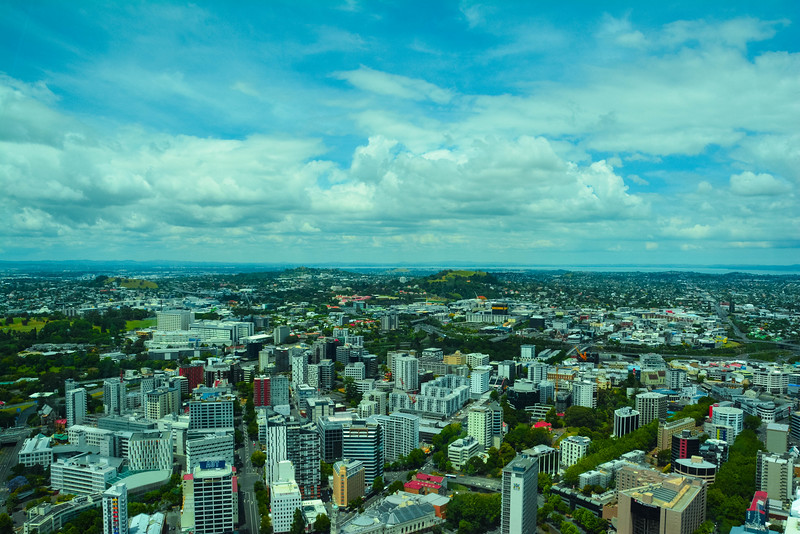 sky tower in auckland panoramic views