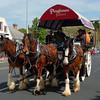 Waggon ride in Devonport