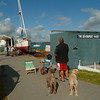 Interested bystanders at Devonport Yacht Club