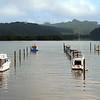 Boat moorings in the river at Waitangi