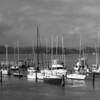 Waitangi yacht moorings