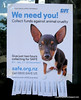 Poster asking for collectors to collect funds against animal cruelty seen in Christchurch, New Zealand in November 2010