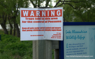 Sign warning of traps laid to control possums at Lake Alexandrina in New Zealand in November 2010