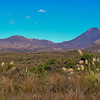 Mt Tongariro and Mt. Ngauruhoe