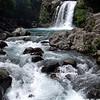 Tawhai Falls, a nice short walk.