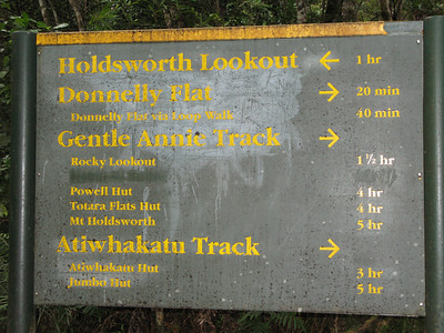 Planned route - Day 1 afternoon to Powell Hut, Day 2 am to Mt Holdsworth, then to Jumbo Hut and back to Holdsworth lodge along the Atiwhakatu River.