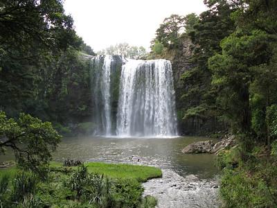 Whangerei Falls