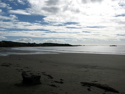 Coopers Beach (Doubtless Bay)
