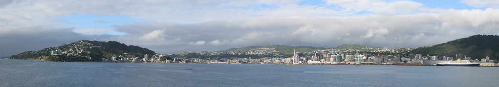 Wellington Harbour & City