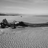 Karamea Estuary