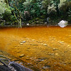 Oparara River, the colour is caused by tanins