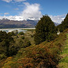 The road to Kinloch and the Dart River