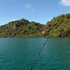 Trolling on Lake Tarawera with a down rigger.