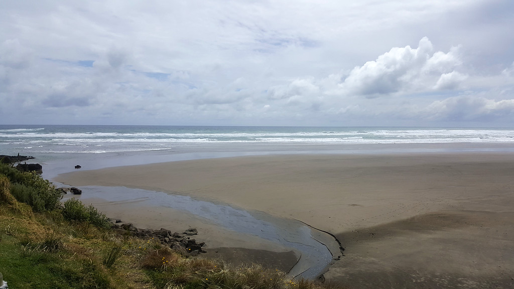 Muriwai Beach - Where to go surfing in Auckland New Zealand