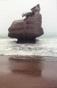Sandy Monolith