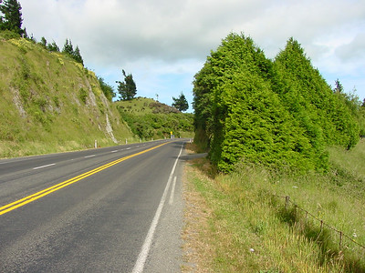 147 -  hwy 5 on the way to taupo