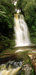 0994 - maclean falls in the catlins forest