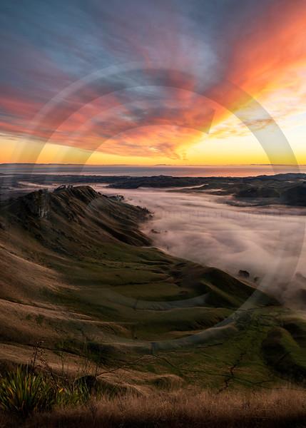 Te Mata Peak Sunrise Portrait