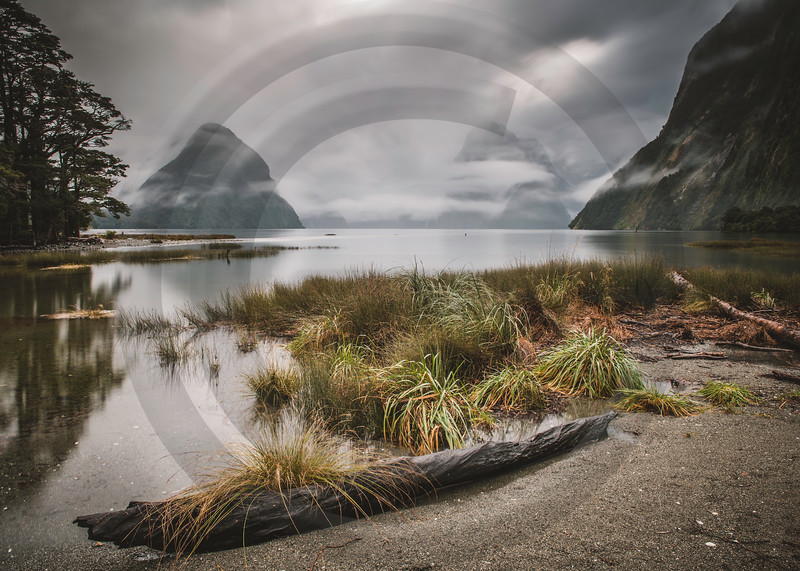 Milford Sound Midday Mist