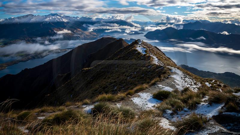Roys Peak Vista
