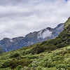 Hills of the Fiordland