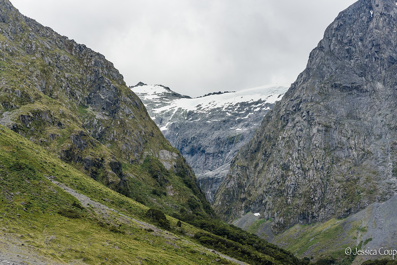 Glacier Area of Fiordland