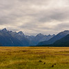 Landscapes of Fiordland National Park