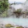 Geothermal Pool at Whakarewarewa