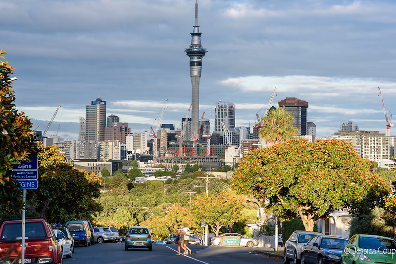 Auckland Skyline from Ponsonby Road
