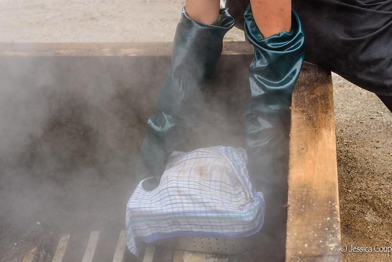 Preparing Hangi Meals in the Steam Box
